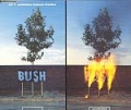 BUSH Swallowed UK CD5