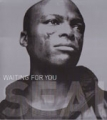 SEAL Waiting For You USA Double 12'' w/8 Mixes