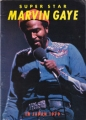 MARVIN GAYE 1979 JAPAN Tour Program