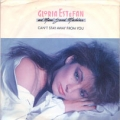 GLORIA ESTEFAN AND MIAMI SOUND MACHINE Can't Stay Away From You USA 7