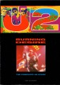 U2 Burning Desire: The Complete U2 Story UK Picture Book
