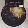 DAVE GAHAN Kingdom EU 7