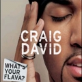 CRAIG DAVID What`s Your Flava UK CD5 Part 1 w/3 Tracks
