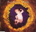CRANBERRIES Salvation UK CD5 w/Live Track