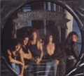 BON JOVI New Jersey USA LP Picture Disc