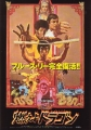 BRUCE LEE Enter The Dragon JAPAN Promo Movie Flyer