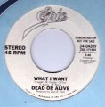 DEAD OR ALIVE What I Want USA 7