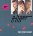 A-HA The Living Daylights GERMANY 12