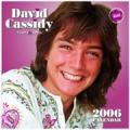 DAVID CASSIDY 2006 UK Calendar