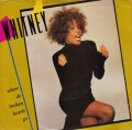 WHITNEY HOUSTON Where Do Broken Hearts Go USA 7