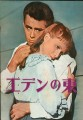 EAST OF EDEN Original JAPAN Movie Program JAMES DEAN JULIE HARRIS