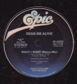 DEAD OR ALIVE What I Want Rare USA Promo 12