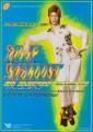 DAVID BOWIE Ziggy Stardust JAPAN Movie Flyer