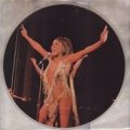 TINA TURNER Tina Turner UK LP Picture Disc