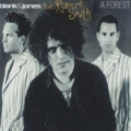 BLANK AND JONES feat. ROBERT SMITH of THE CURE A Forest GERMANY CD5