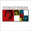 DAVID CASSIDY & THE PARTRIDGE FAMILY Could It Be Forever...The Greatest Hits EU CD