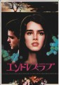 BROOKE SHIELDS Endless Love JAPAN Movie Program