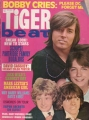 BOBBY SHERMAN Tiger Beat (10/70) USA Magazine