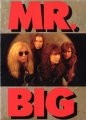 MR.BIG 1991 JAPAN Tour Program