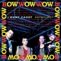 BOW WOW WOW Anthology UK CD Box Set w/Bonus Disc of Live Tracks