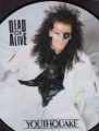 DEAD OR ALIVE Youthquake JAPAN LP Picture Disc