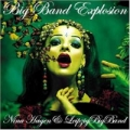 NINA HAGEN Big Band Explosion GERMANY CD