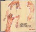 VELVET REVOLVER Fall To Pieces EU DVD