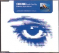 CHICANE feat.BRYAN ADAMS Don't Give Up UK CD5 Promo Only