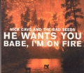 NICK CAVE AND THE BAD SEEDS  He Wants You/Babe I`m On Fire EU CD