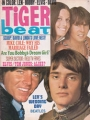 BOBBY SHERMAN Tiger Beat (10/69) USA Magazine