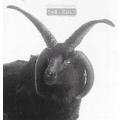 CULT The Cult USA CD Promo