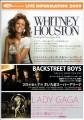 WHITNEY HOUSTON 2009 JAPAN Tour Flyer (C)