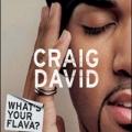 CRAIG DAVID What`s Your Flava UK CD5 Part 1 w/3 Tracks
