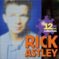 RICK ASTLEY 12 Inch Collection JAPAN CD