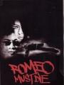 ROMEO MUST DIE Original JAPAN Movie Program JET LI   AALIYAH