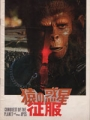 CONQUEST OF THE PLANET OF THE APES Original JAPAN Movie Program RODDY MCDOWALL RICARDO MONTALBAN