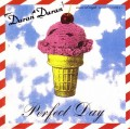 DURAN DURAN Perfect Day USA CD5 CD1