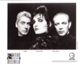 SIOUXSIE & THE BANSHEES The Rapture USA Press Kit