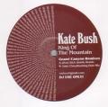 KATE BUSH King Of The Mountain UK 12