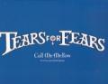 TEARS FOR FEARS Call Me Mellow EU Double 12
