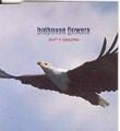 HOTHOUSE FLOWERS Isn't It Amazing UK CD5 Part 2 w/Holographic