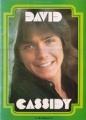 DAVID CASSIDY 1974 Japan Tour Program SUPER RARE!!!