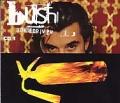 BUSH Bone Driven UK CD5