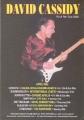DAVID CASSIDY 2002 Rock Me Tour UK Flyer